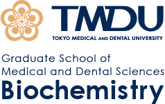Tokyo Medical and Dental University, Department of Biochemistry|Professor Tetsuro Watabe