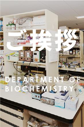研究室について